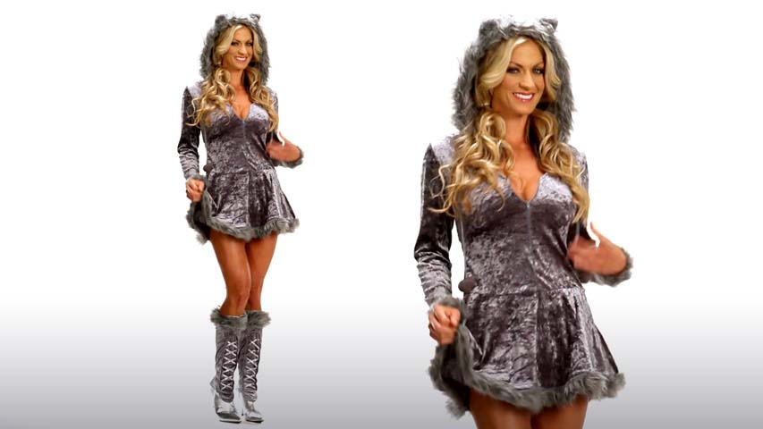 Big Bad Sexy Wolf Costume