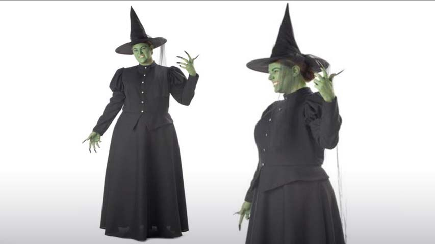 Plus Size Womens Wicked Witch Costume