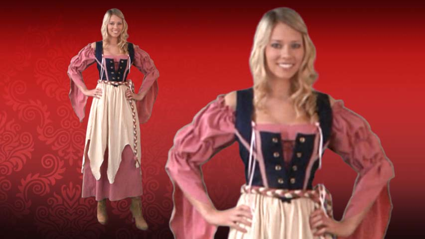 Renaissance Pirate Wench Costume